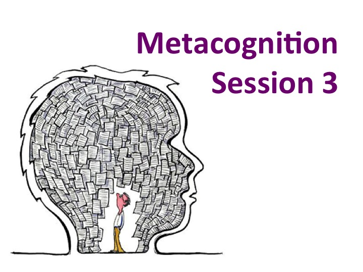 Metacognition Series: 3 of 6